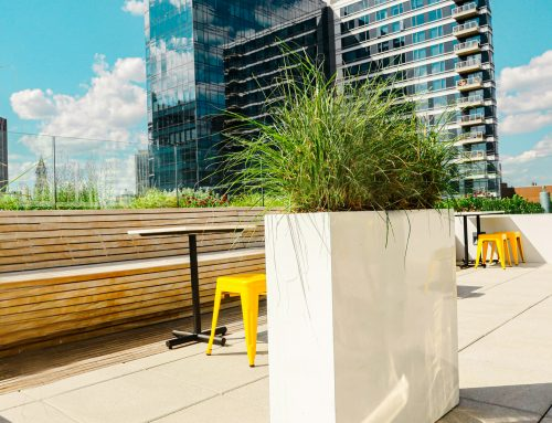 Biophilic Design as the Way to Move Forward