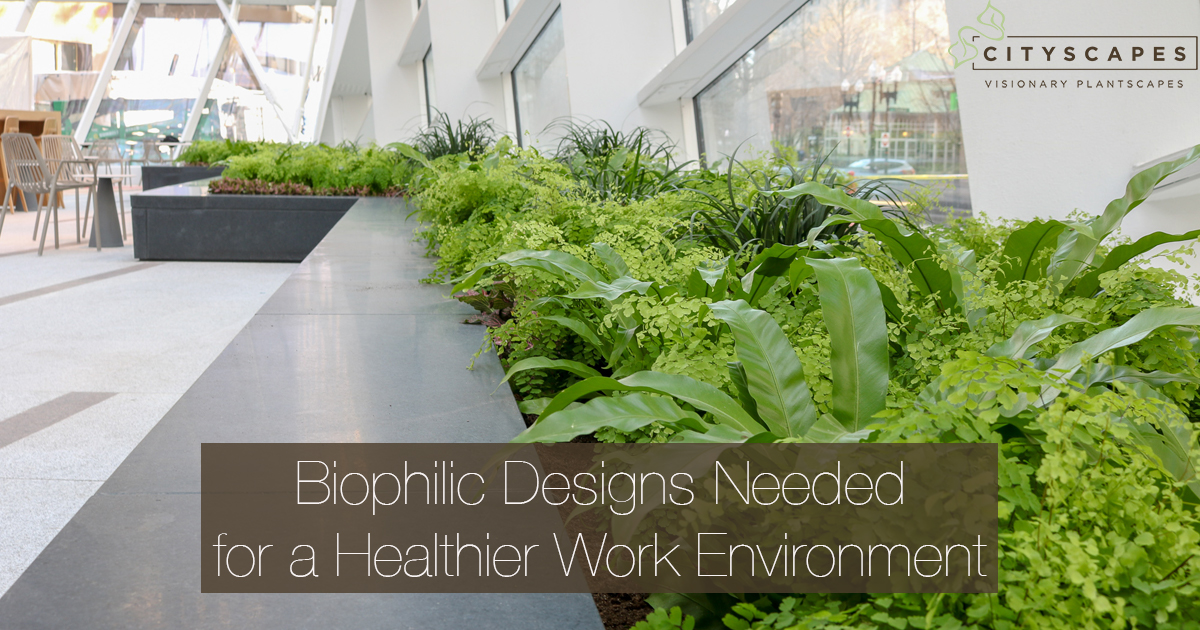 Biophilic Designs Needed For a Healthier Work Environment
